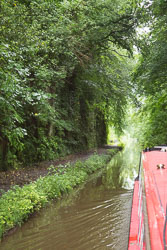 Woodseaves_Cutting_Shropshire_Union_Canal-006.jpg