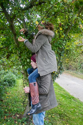 Claydon_Apples-005.jpg