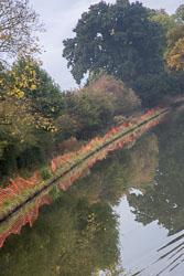 Grand_Union_Canal-256.jpg