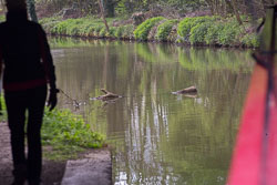 Oxford_Canal_South-184.jpg