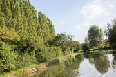 2017July_Grand_Union_Canal-361