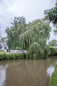 2017July_Grand_Union_Canal-665