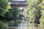 2017July_Oxford_Canal-137