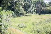 Oxford_Canal_Original,_Newbold-006