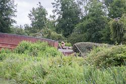 2017July_Grand_Union_Canal-341.jpg
