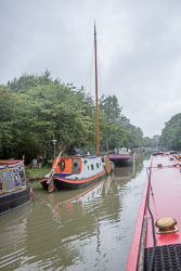 2017July_Grand_Union_Canal-423.jpg