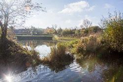 River_Avon-094.jpg
