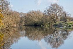 River_Avon-097.jpg