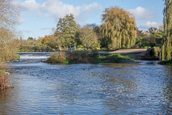 River_Avon-098.jpg