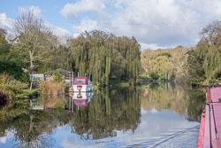 River_Avon-100.jpg