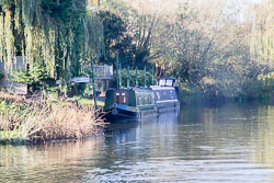 River_Avon_Barton-019.jpg