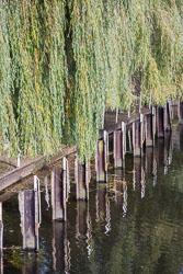 River_Avon_Stratford-Upon-Avon-017.jpg