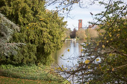 River_Avon_Stratford-Upon-Avon-018.jpg