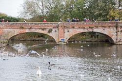 River_Avon_Stratford-Upon-Avon-023.jpg