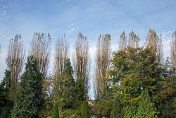 Stratford-Upon-Avon-029.jpg