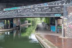 Birmingham_-_Fazeley_Canal-1465.jpg