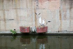 Grand_Union_Canal-1461.jpg