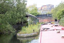Grand_Union_Canal-1480.jpg