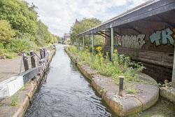 Grand_Union_Canal-1484.jpg