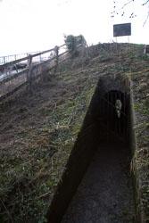 GUC_Iron_Trunk_Aqueduct-110.jpg