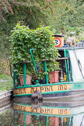 Coventry_Canal-143.jpg