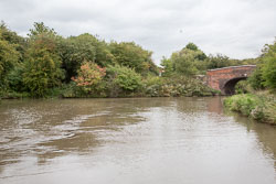 Coventry_Canal-185.jpg
