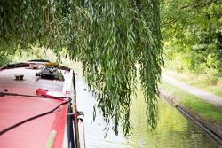 Grand_Union_Canal-1232.jpg