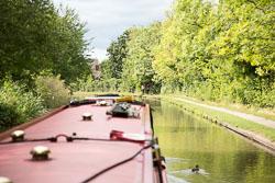Grand_Union_Canal-1234.jpg