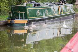 Grand_Union_Canal-1327.jpg