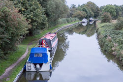 Grand_Union_Canal-1339.jpg