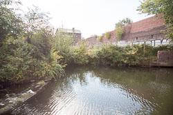 Grand_Union_Canal-1486.jpg