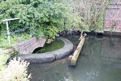 Grand_Union_Canal-1502.jpg