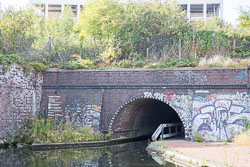 Grand_Union_Canal-1513.jpg