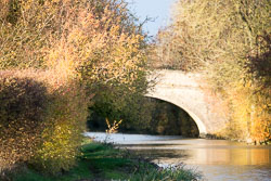 Oxford_Canal_North-1016.jpg