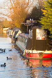 Oxford_Canal_North-1025.jpg
