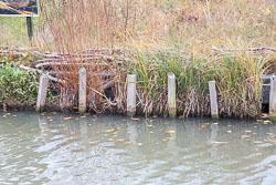 Oxford_Canal_North-1180.jpg