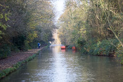 Oxford_Canal_North-1211.jpg