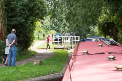 Coventry_Canal-251.jpg