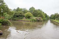 Coventry_Canal-296.jpg