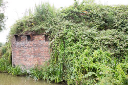 Coventry_Canal-299.jpg