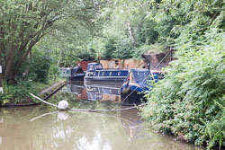 Coventry_Canal-320.jpg
