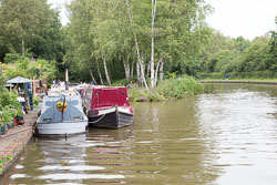Coventry_Canal-325.jpg