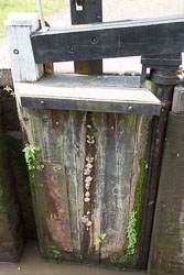 Coventry_Canal-347.jpg