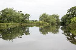 River_Trent-178.jpg