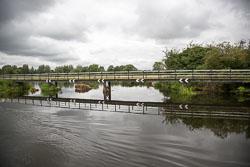 Trent_-_Mersey_Canal-264.jpg