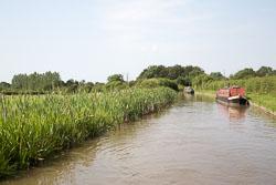 Ashby_De_La_Zouch_Canal-022.jpg