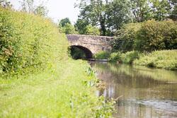Ashby_De_La_Zouch_Canal-043.jpg