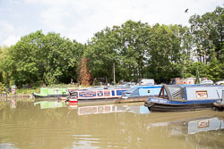 Ashby_De_La_Zouch_Canal-075.jpg