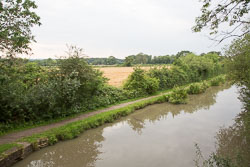 Ashby_De_La_Zouch_Canal-128.jpg