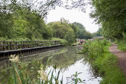 Ashby_De_La_Zouch_Canal-131.jpg